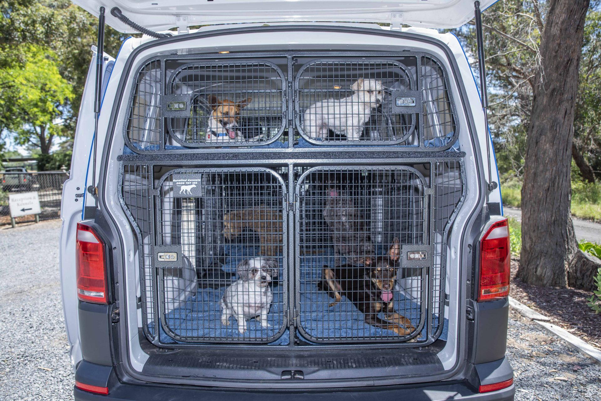 Pet Transport, Pet Taxi Services Yarra Valley Pet Accomodation