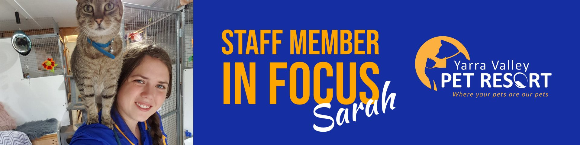 Staff Member In Focus: Sarah – Senior Kennel Attendant