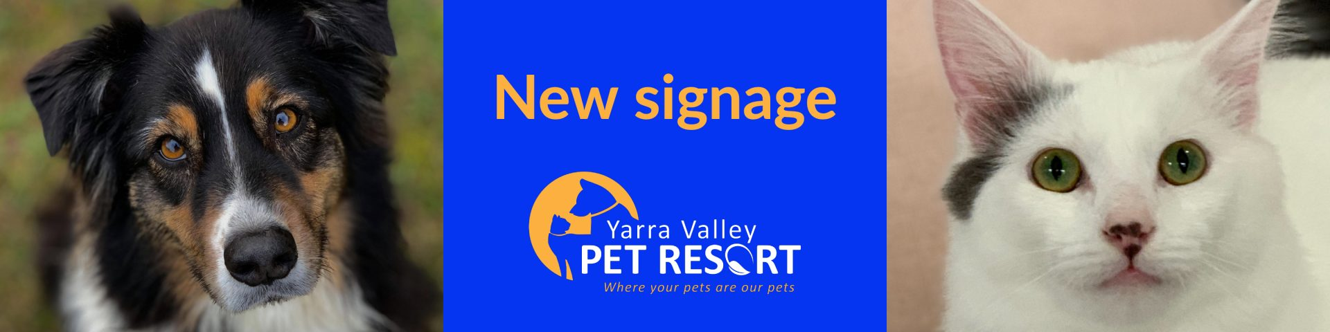 New Signage Complete – YV Pet Resort Badger Creek