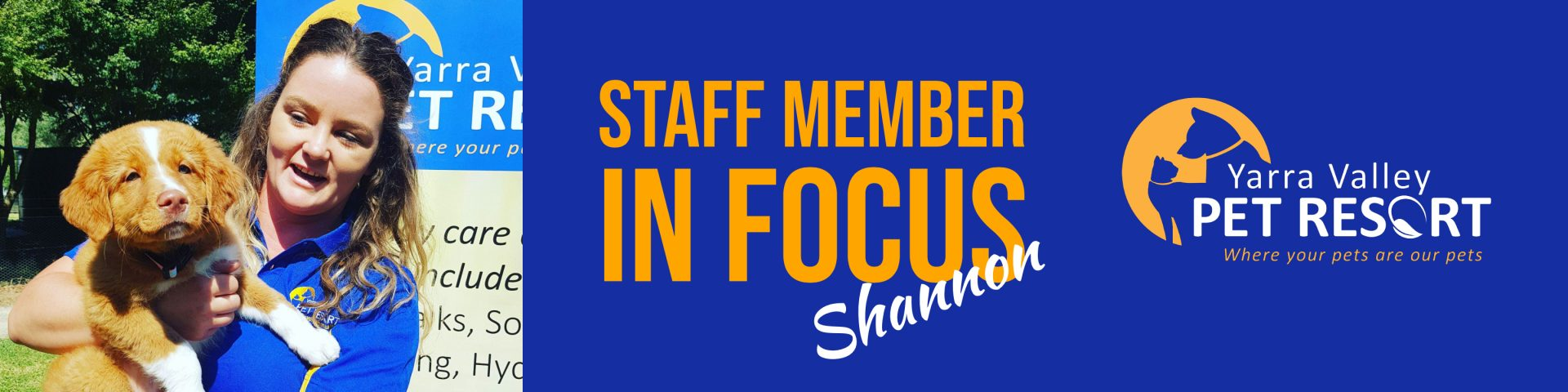 Staff Member In Focus – Shannon – Kennel Manager