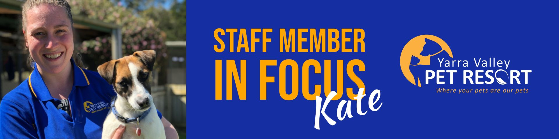 Staff Member In Focus – Kate – Senior Kennel Attendant